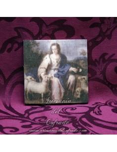 Placa de madera 10x10 de la Divina Pastora