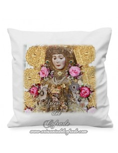 Cojin 35x35 ctm de la Virgen del Rocio
